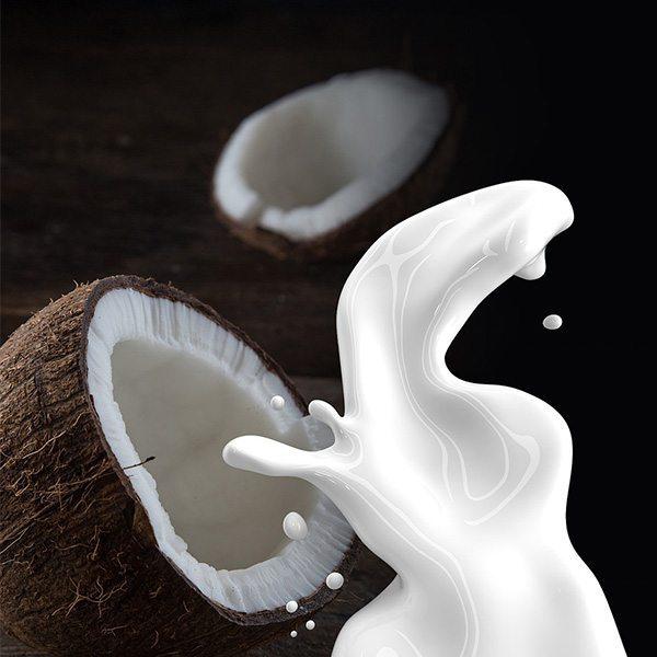 Coconut Cream Fragrant Oil