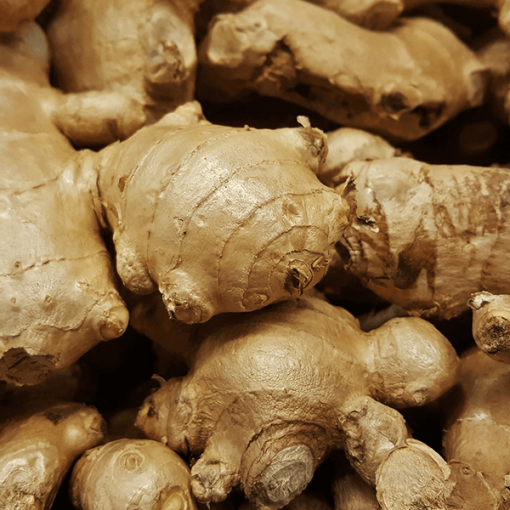 Ginger Root (Fresh) Essential Oil