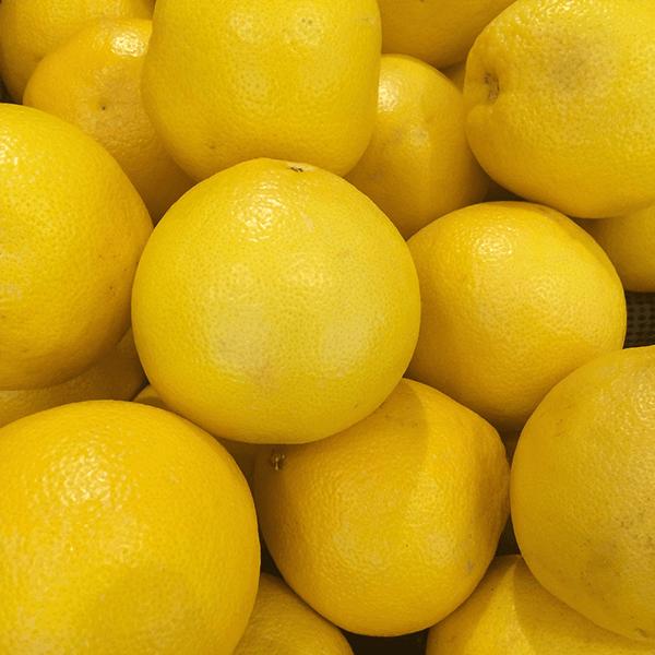 Grapefruit (White) Essential Oil