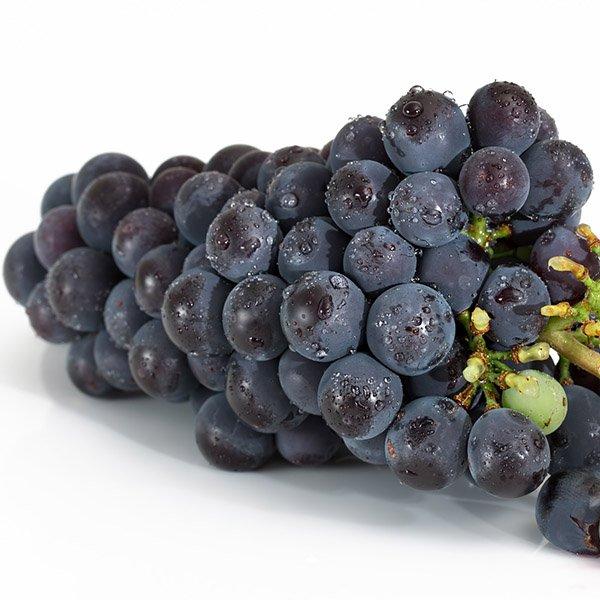 Grapeseed Organic