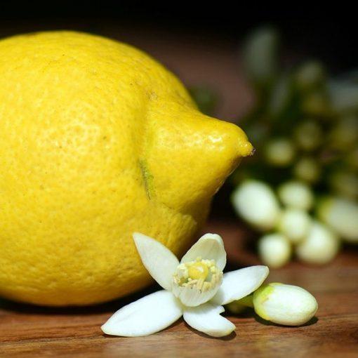 Lemon Blossom Fragrant Oil
