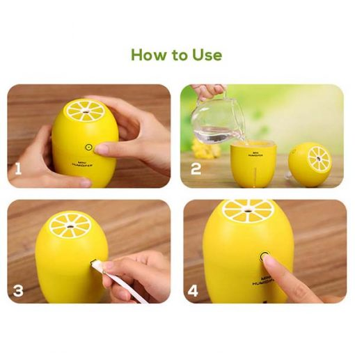 Lemon Diffuser How To