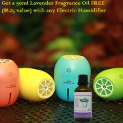 Lemon USB ultrasonic humidifier with Lavender Fragrance Oil
