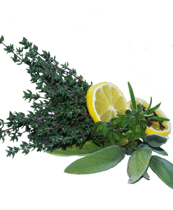 Citrus Twist Fragrant Oil